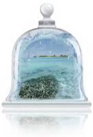 caribbean-sea-fragrance