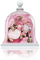 rose-garden-fragrance